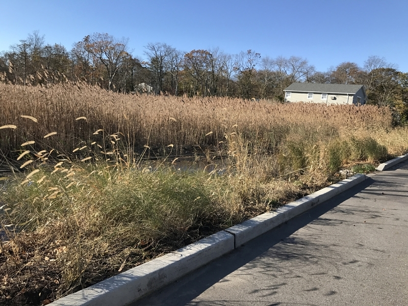 TO Islip_Connectquot (Middlesex Ave)_13195 IMG_1599